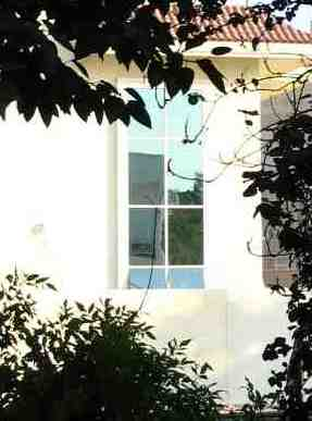 window, window through trees, middle east house
